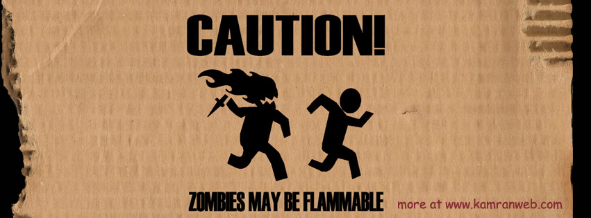 Funny Timeline Cover - Zombies May Be Flammable Cover