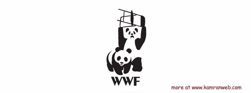 Funny Timeline Cover - World Wrestling Federation Cover